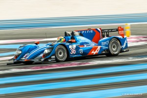 Alpine champion endurance ELMS 2013