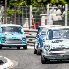 Grand Prix de Pau Historique 2014 : Maxi 1000