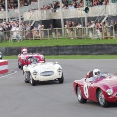 Goodwood Revival 2014 : Freddie March Memorial Trophy
