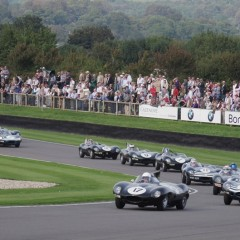 Goodwood Revival 2014 : Lavant Cup, Jaguar Type D