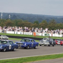 Goodwood Revival 2014 : Shelby Cup