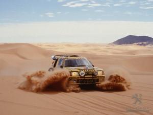 Peugeot 206 T16 Dakar