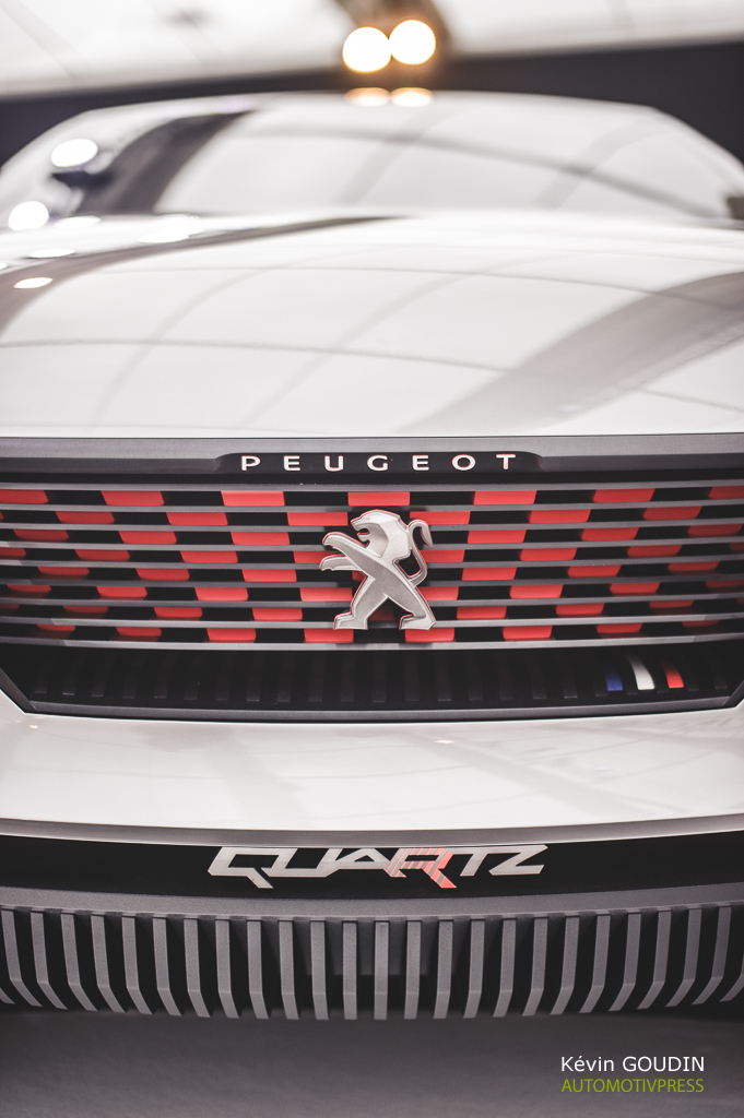 Festival Automobile International 2015 - Kevin Goudin - Peugeot Quartz