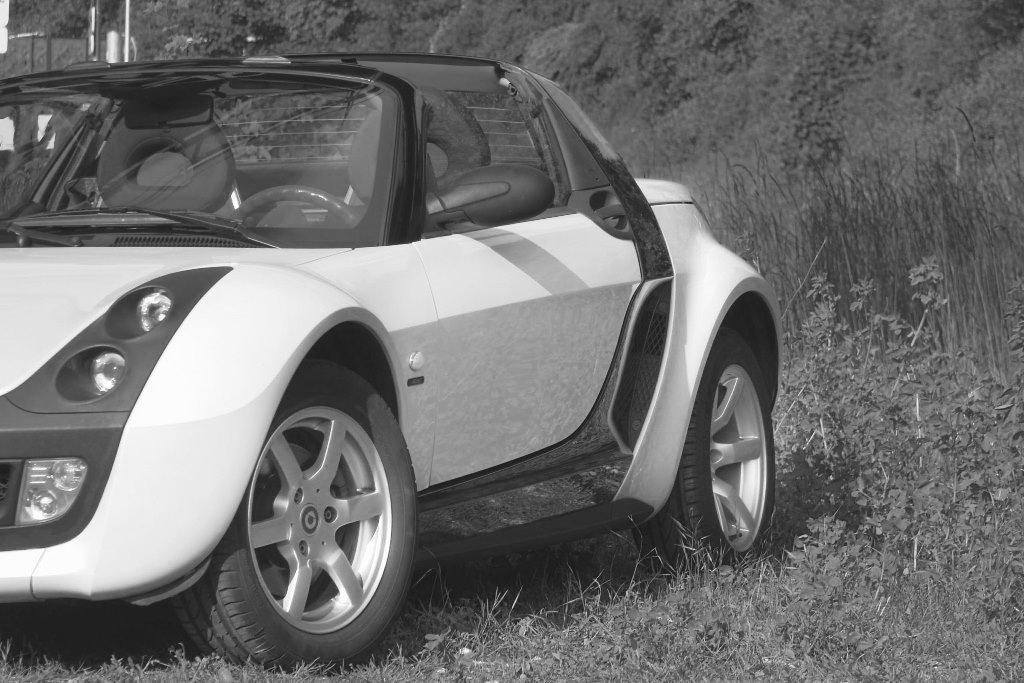 007Smart Roadster Affection 2004