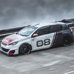 Peugeot 308 Racing Cup : L'après RCZ Racing Cup…