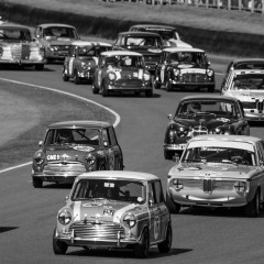Goodwood Revival 2015 : St Mary's Trophy