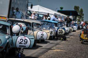 Grand Prix de l'Age d'Or - Le Mans Classic - Pierre Yves Riom