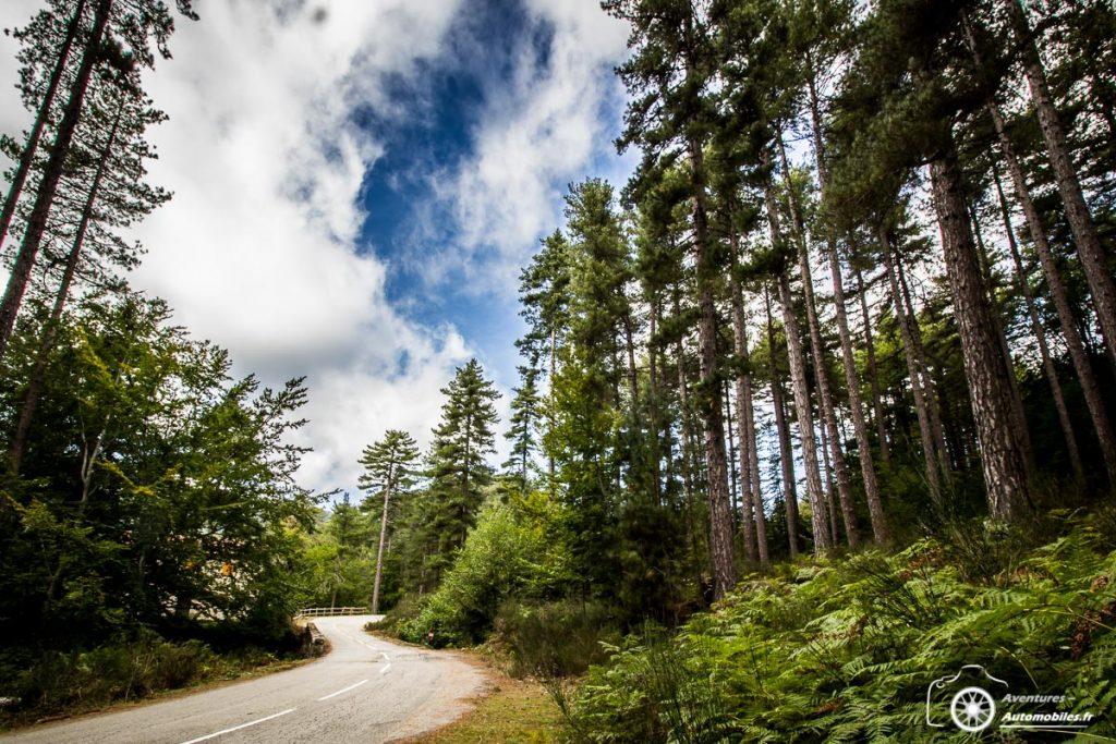 Rallye touristique Corse 2019 - Sylvain Bonato
